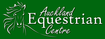 Auckland Equestrian Centre Horse Riding lessons